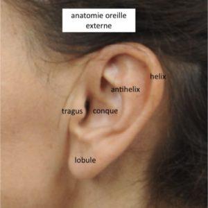 chirurgie esthetique docteur loreto chirurgien esthetique paris chirurgie du visage chirurgie des oreilles decollees earfold implant technique earfold